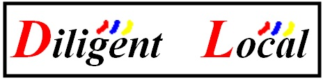 Diligent Consulting Group